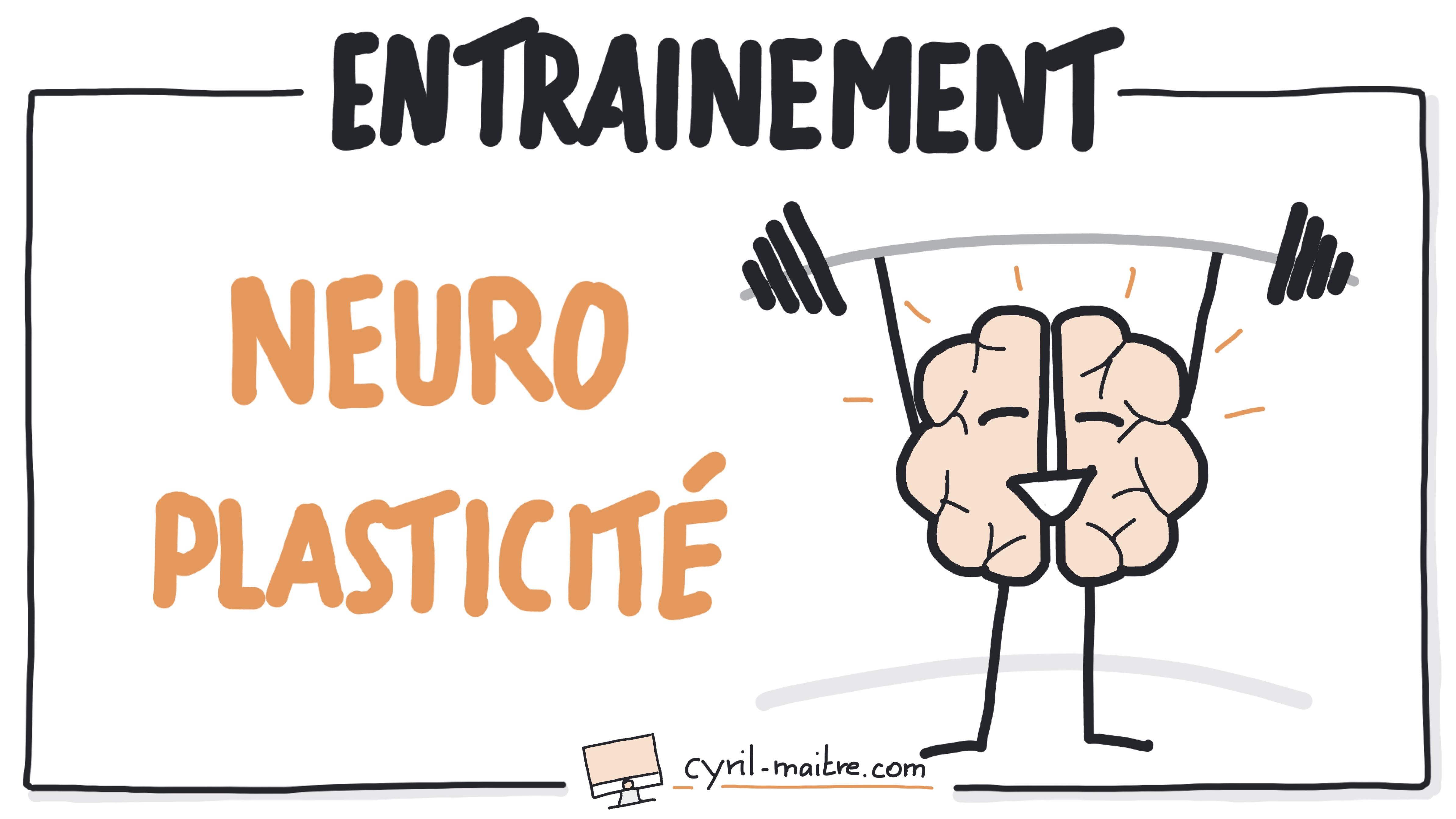 Votre programme d'entrainement spécial neuroplasticité