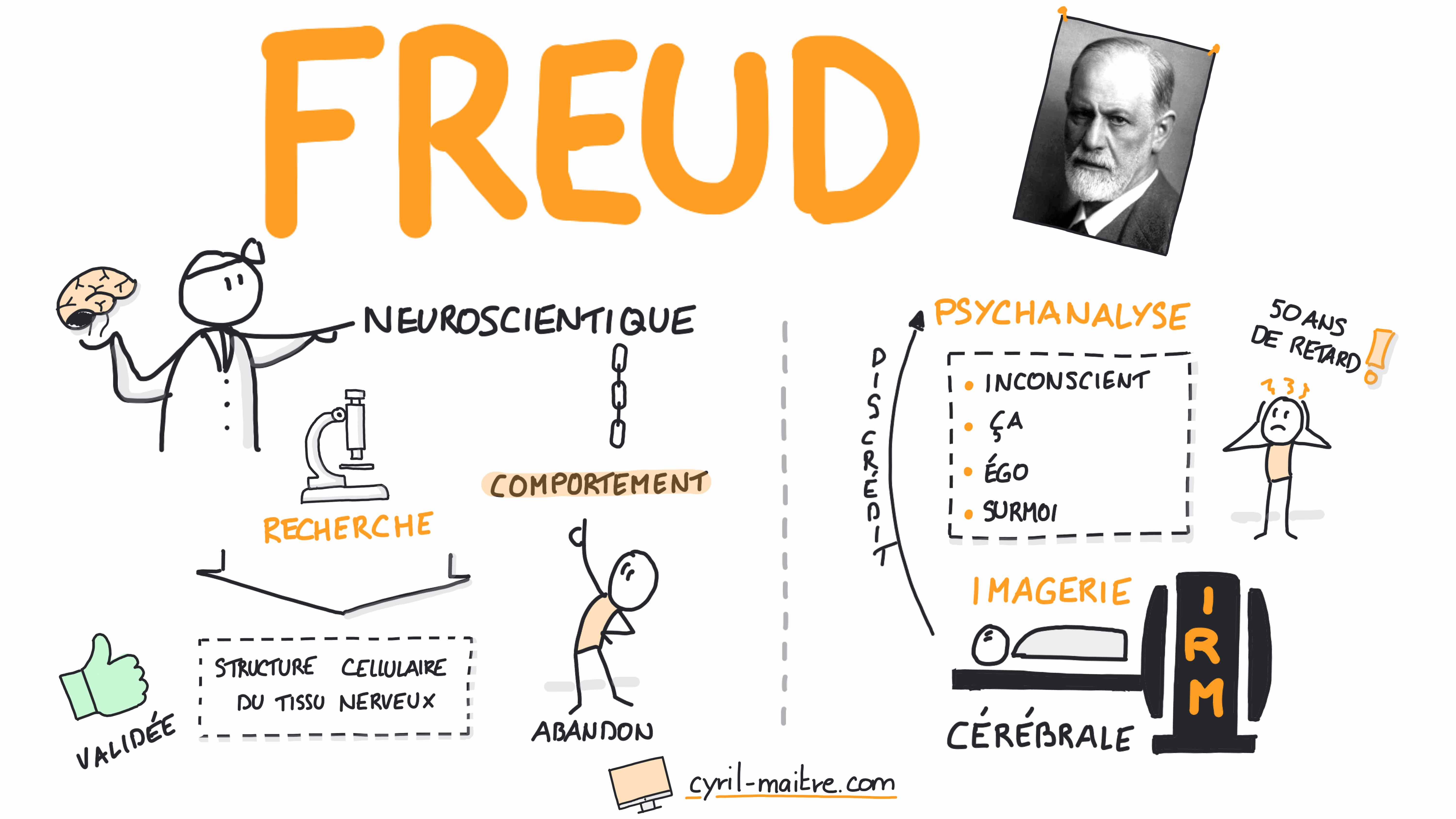 Freud et les neurosciences - les neurosciences en dessins