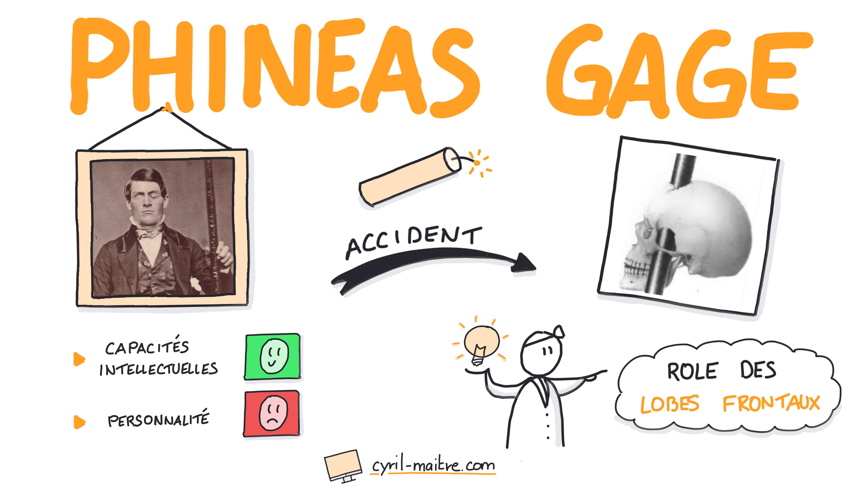 L'incroyable accident de Phineas Gage - les neurosciences en dessins
