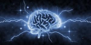 Livres sur le fonctionnement du cerveau