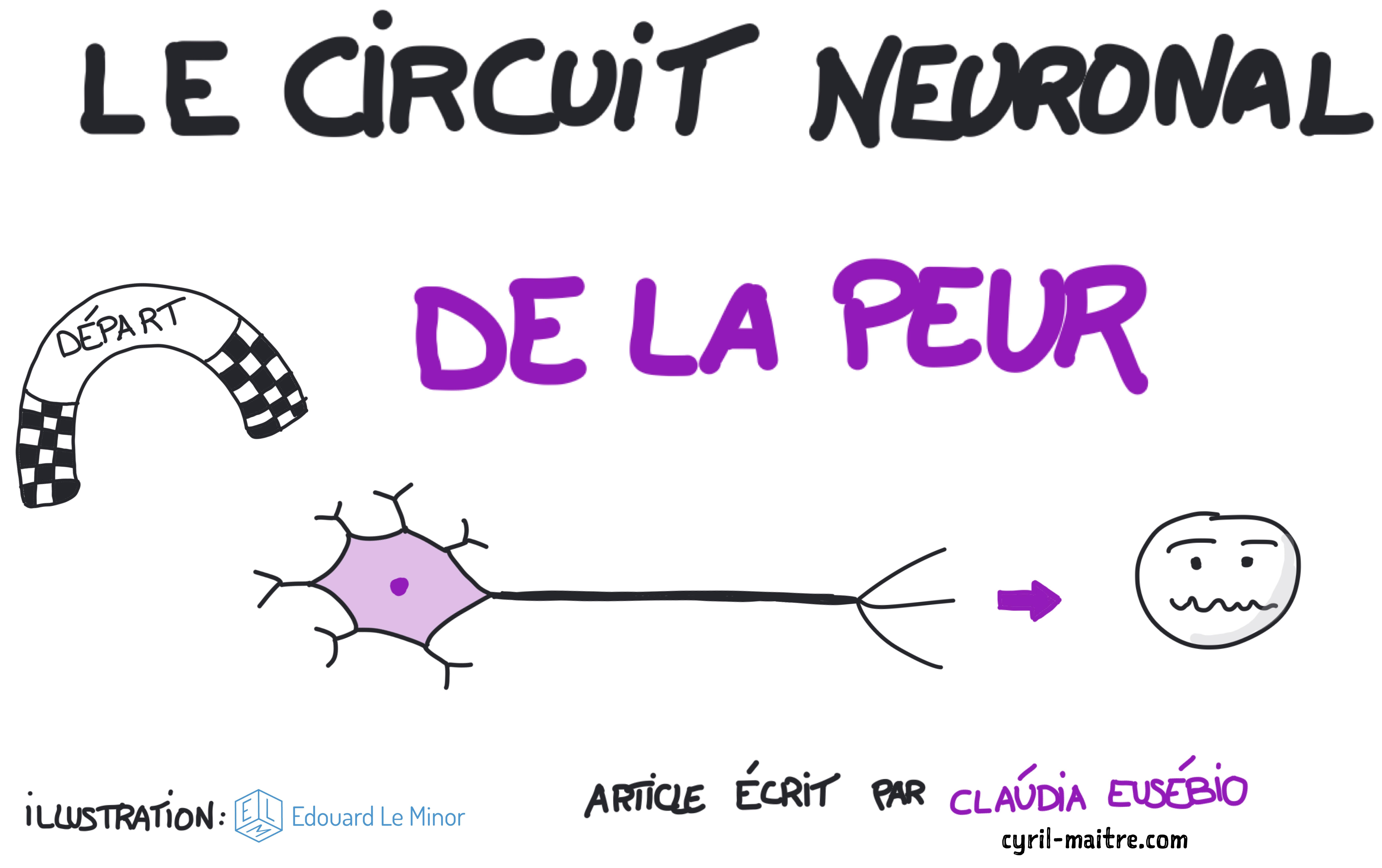 Le circuit neuronal de la peur par Claúdia Eusébio