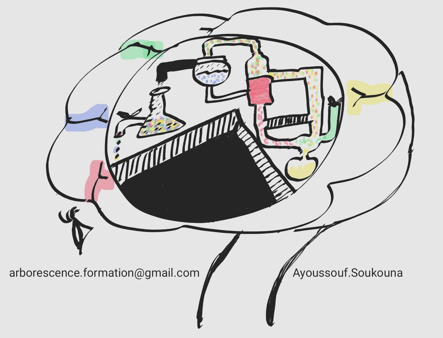 Neuroapprentissage
