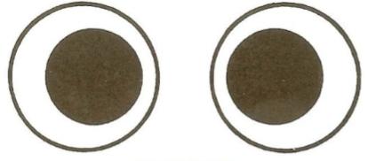 Stéréogramme : expérience visuelle