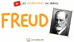 Vignette de FREUD ET LES NEUROSCIENCES - Les neurosciences en dessins