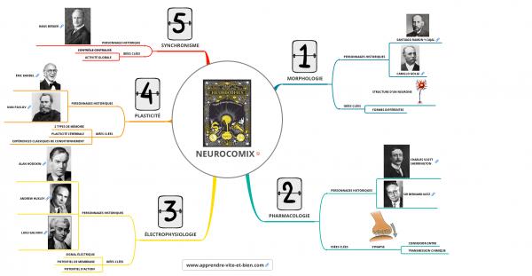 Carte mentale résumant Neurocomix