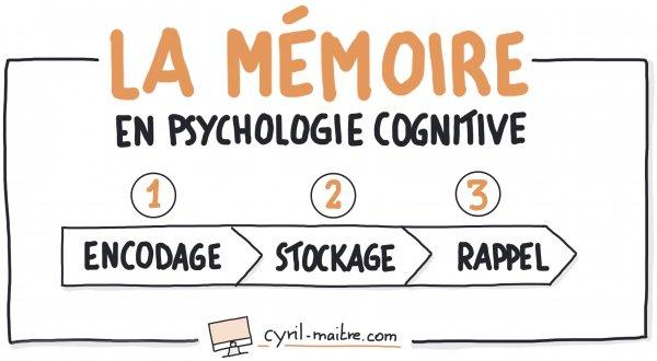 Définition de la mémoire en psychologie cognitive