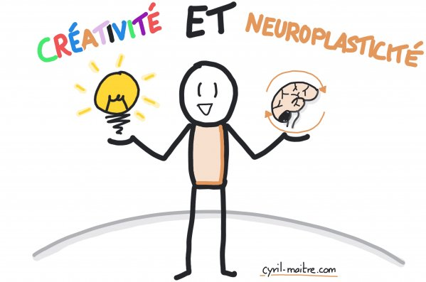 Créativité et neuroplasticité