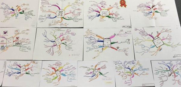 Exemples de cartes réalisées en formation par des participants