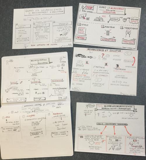 Exemples de sketchnotes réalisés par des participants à la formation