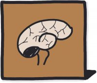 Influence du brun sur votre cerveau