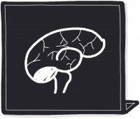 Influence du noir sur votre cerveau