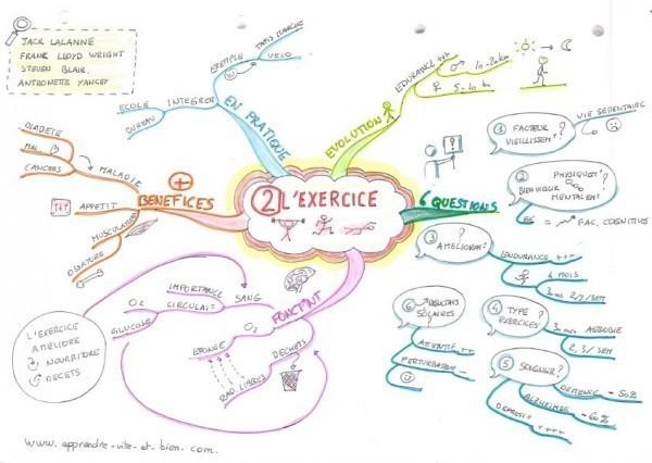 Mind map de la 2ème loi du cerveau.
