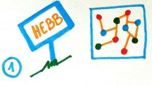 Mémoire et théorie de Hebb