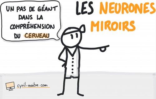 Neurones miroirs et compréhension du cerveau