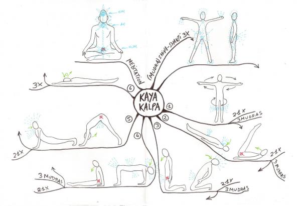 Carte mentale sur la pratique indiene du Kaya Kalpa.