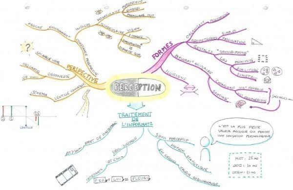 La perception en Psychologie cognitive (cliquez sur l'image pour l'agrandir).