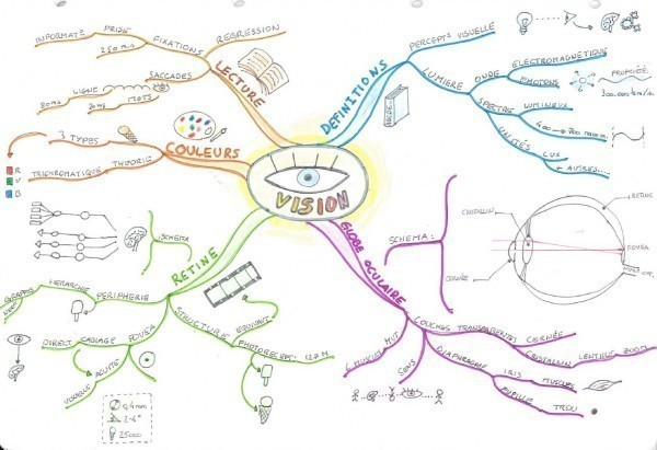 La Vision dans la Psychologie cognitive (cliquez sur l'image pour l'agrandir) .